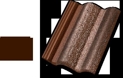 coppo_latino